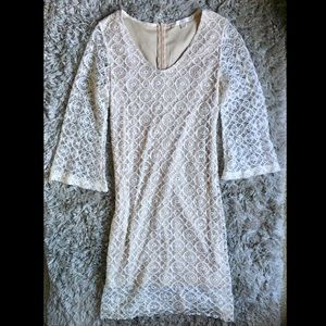 Boston Proper Lace Sheath Cream 3/4 Sleeve Dress